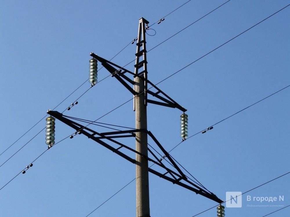 Богородским садоводам завысили плату за электричество - фото 1