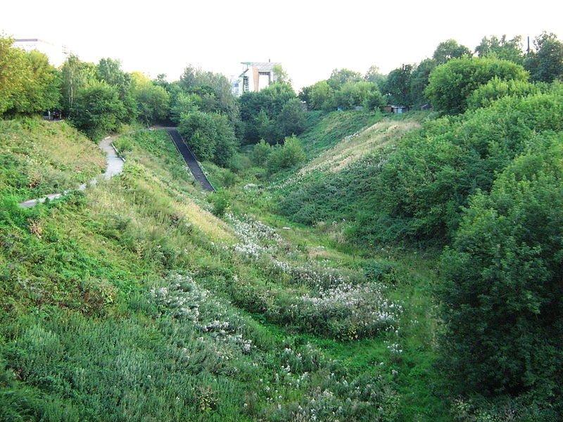 Террасный парк может появиться в Почаинском овраге в Нижнем Новгороде - фото 1