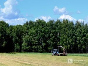 Аграрии Нижегородской области намолотили уже больше миллиона тонн зерна