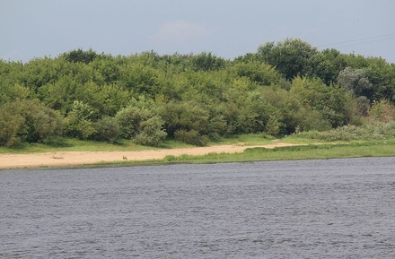 Жители Богородска решат судьбу Кабацкого озера
