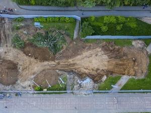 В Кузнечихе вырубили деревья ради строительства McDonald's