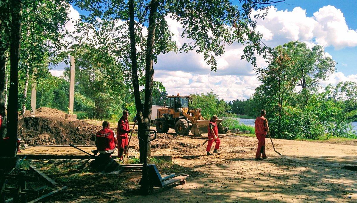 Свыше 400 деревьев высадят в Светлоярском парке в рамках благоустройства - фото 1