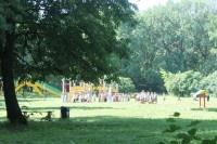 В 2014 году нижегородцам будет предложено организовать в своем дворе коллективный сад