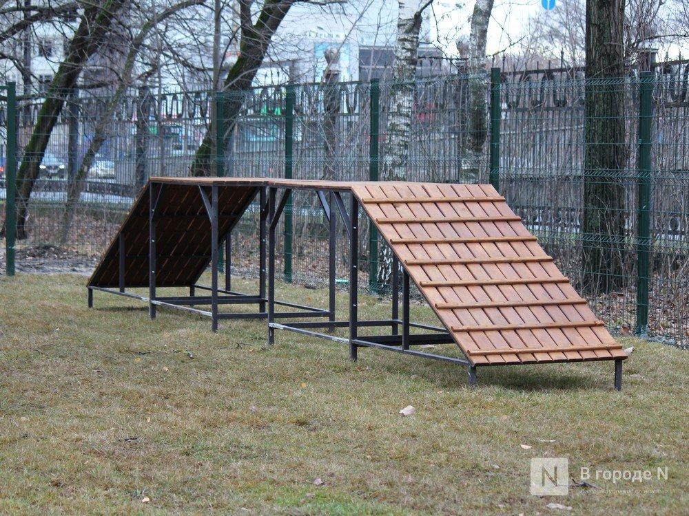 Уникальная площадка и тропинки для собак появились в нижегородском парке «Дубки» - фото 2