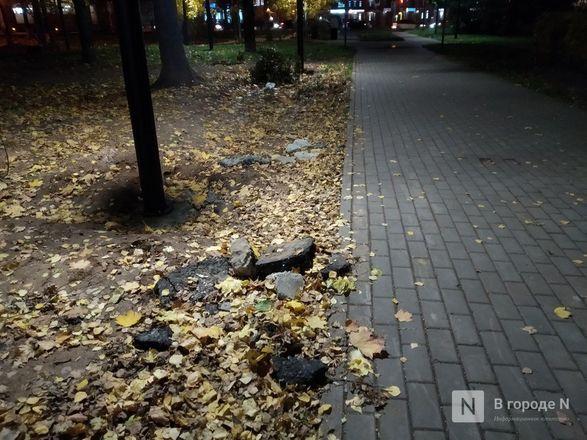 Недоблагоустройство: нижегородцы продолжают жаловаться на мусор в парке Пушкина - фото 15
