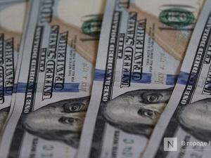 Барсетку с долларами похитил у нижегородца собутыльник около сауны