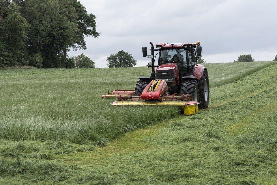 Более 50% кормов для животных заготовили нижегородские земледельцы - фото 1