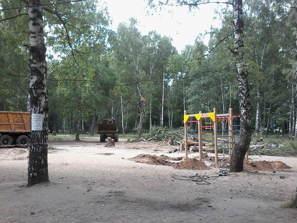 Детскую площадку демонтировали в парке Пушкина в Нижнем Новгороде - фото 1