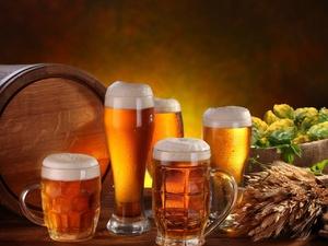 Эксперты назвали марки самого вкусного пива в России