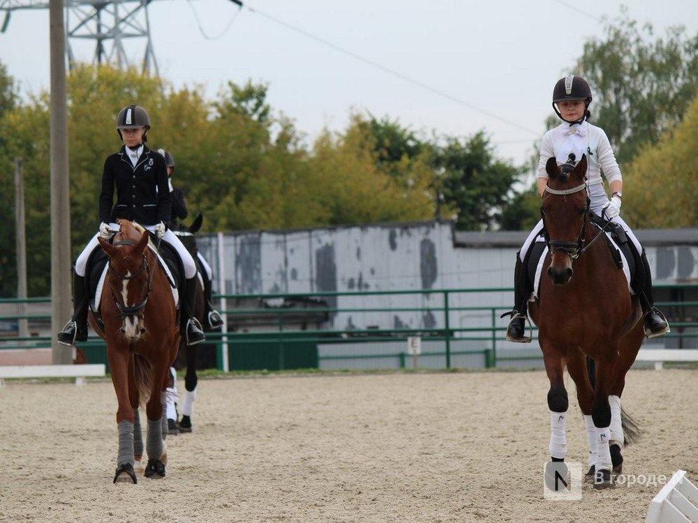 Два коня и новое оборудование для фехтования появятся в нижегородской СШОР  - фото 1