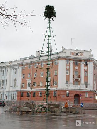Главную городскую елку начали устанавливать на площади Минина и Пожарского - фото 4