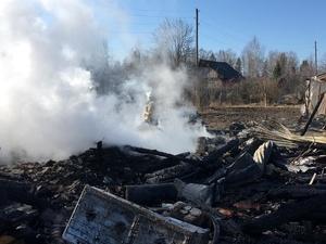 Два ребенка погибли на пожаре в Воскресенском районе