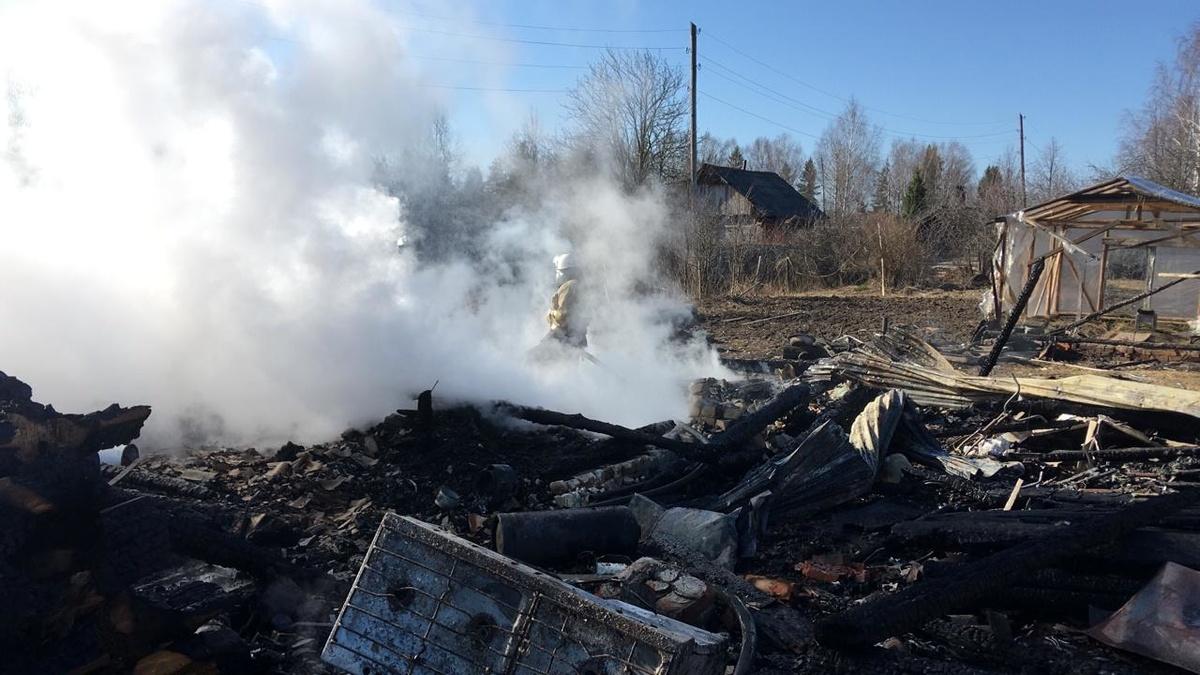 Два ребенка погибли на пожаре в Воскресенском районе - фото 1