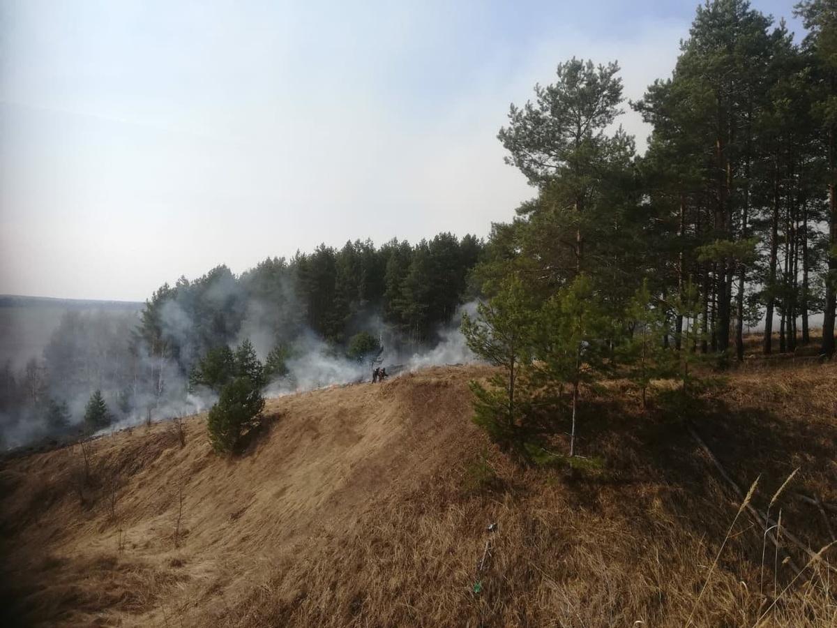 Пал сухой травы подверг угрозе возгорания село в Кстовском районе - фото 1