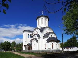 Ковчег с мощами Серафима Саровского привезут в Нижний Новгород