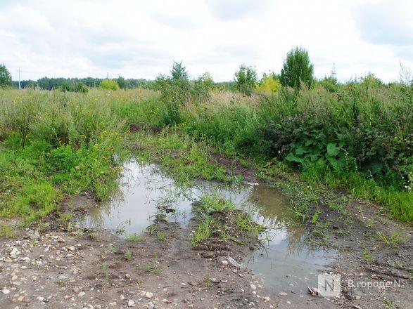 Долгая дорога из Долгово: птицефабрика «выставила» местных жителей на трассу - фото 19