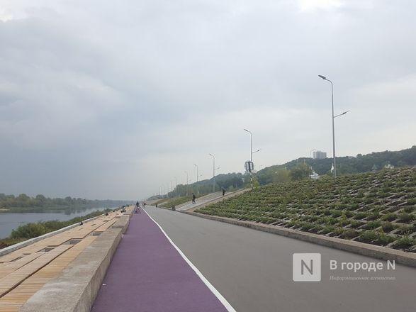Велодорожка и сады на бетонном склоне: новая жизнь набережной Гребного канала - фото 10