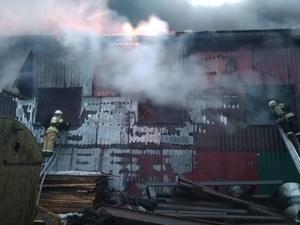 Пилорама площадью 1000 кв. метров горит в Дальнем Константинове