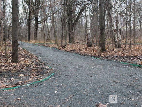 Уникальная площадка и тропинки для собак появились в нижегородском парке «Дубки» - фото 8