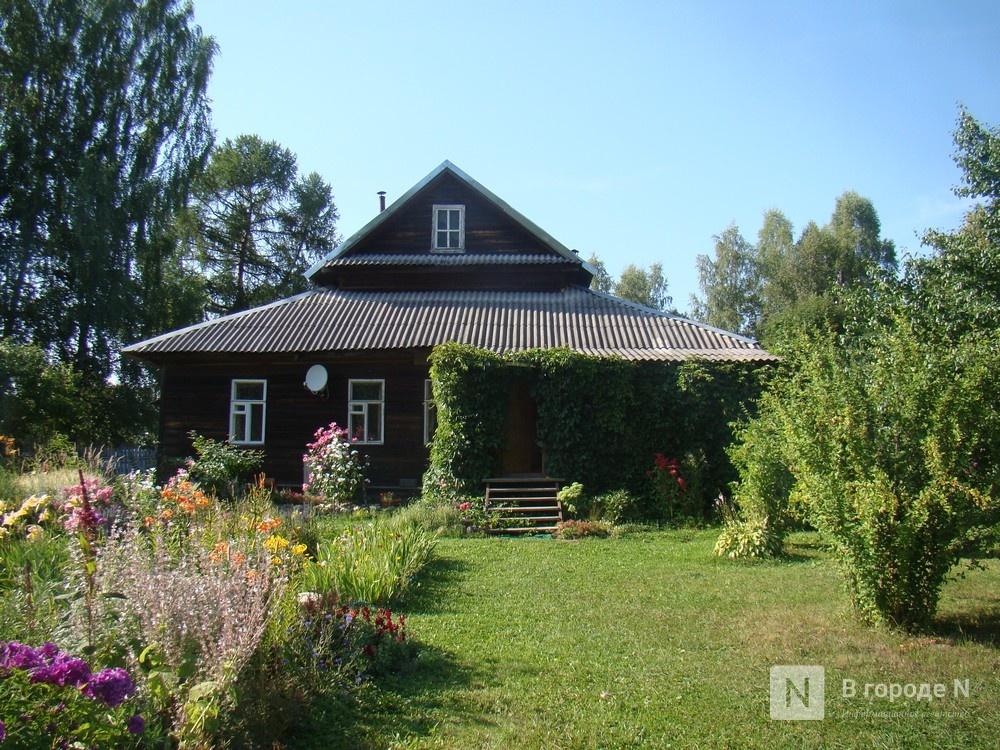 Половина нижегородцев отдыхала эти летом на даче и дома - фото 1